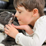 Gatti e bimbi