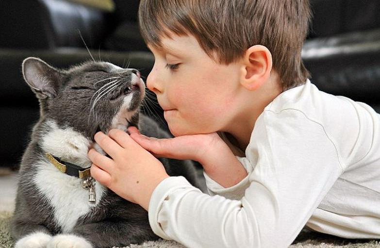 Bambini E Gatti Ente Nazionale Protezione Animali