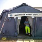 ENPA Milano nelle zone terremotate dell'Emilia soccorre cane stremato dal caldo