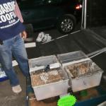 Le Guardie Zoofile dell'ENPA sequestrano a Milano carrello auto contenente centinaia di animali di piccola taglia