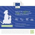 Petizione UE sul commercio di animali