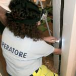 Piccione nell'intercapedine del muro da tre giorni, salvo grazie a ENPA Milano