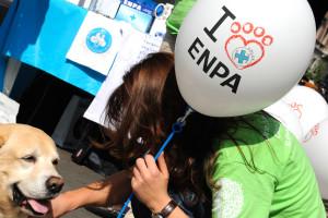 ENPA Milano sfida con un sondaggio i prossimi candidati sindaco
