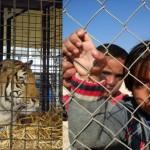 Il circo, gli animali e i migranti