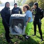 ENPA Milano: 365 giorni di impegno per salvare animali e difendere i loro diritti