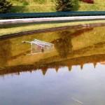 Lettera di ENPA al Comune di Milano per degrado del laghetto del Portello