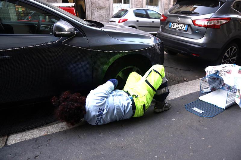 Corso di porta romana enpa salva gattino incastrato dentro un auto