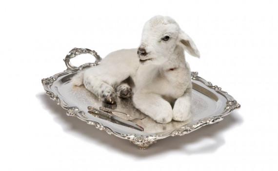 agnello pasqua su vassoio