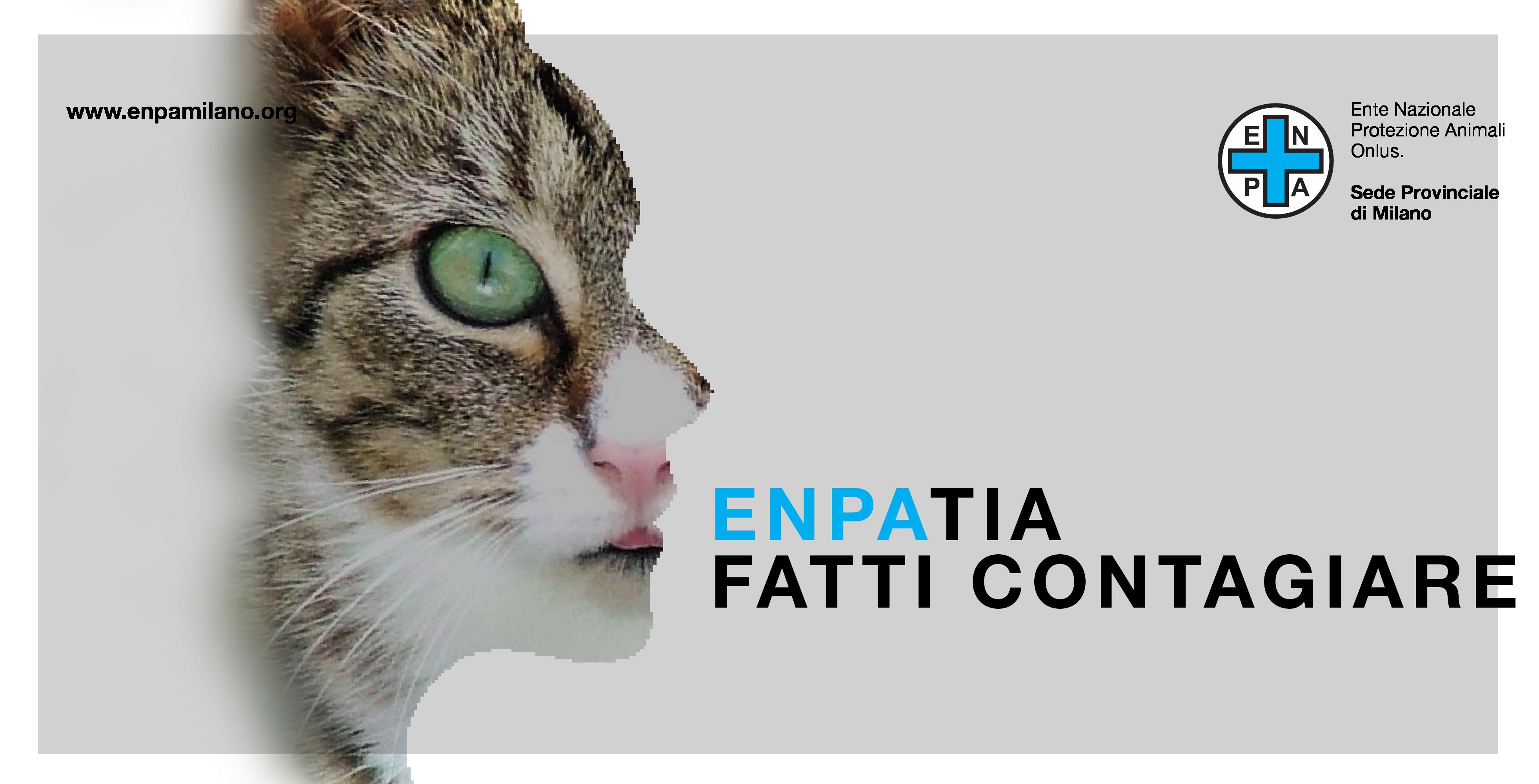 Diventa Volontario Enpa Ente Nazionale Protezione Animali