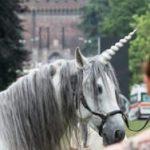 Cavallo travestito da unicorno: fenomeno da baraccone per motivazioni economiche.