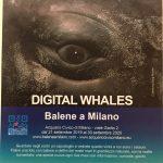 DIGITAL WHALES – Balene a Milano con la realtà aumentata dal 21 settembre all'Acquario Civico