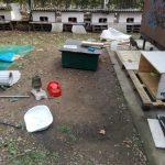 ENPA Milano si costituirà parte civile per i due gatti uccisi a Bareggio