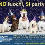 """Botti di Capodanno, l'ENPA ai sindaci: """"Arrivare preparati con ordinanze restrittive"""" – Consigli su come proteggere dai botti i vostri animali"""